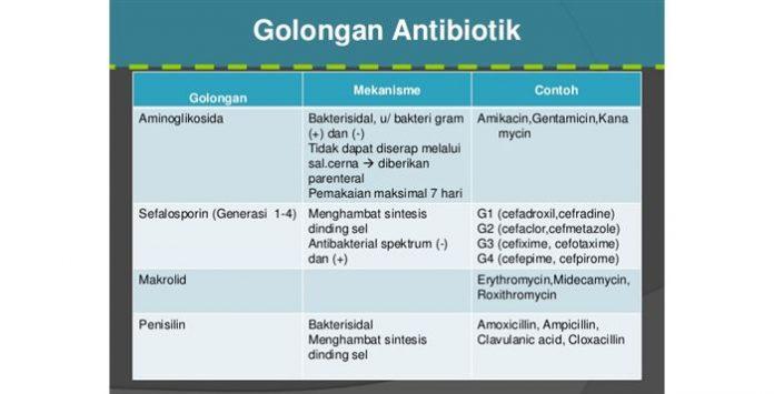 Antibiotik Golongan Sefalosporin Jenis Antibiotik Golongan B-Laktam untuk Terapi Infeksi Bakteri