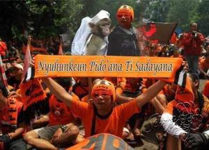 Balasan The Jack Kawin Monyet