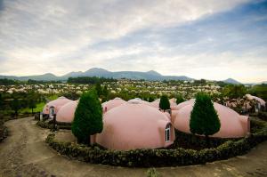 farm land aso kapsul hotel