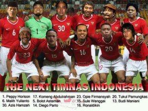 the next timnas indonesia