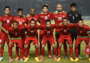 timnas indonesia aff 2014