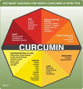fungsi curcumin