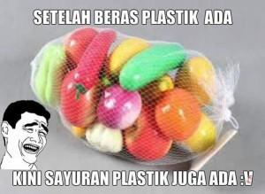 meme beras plastik