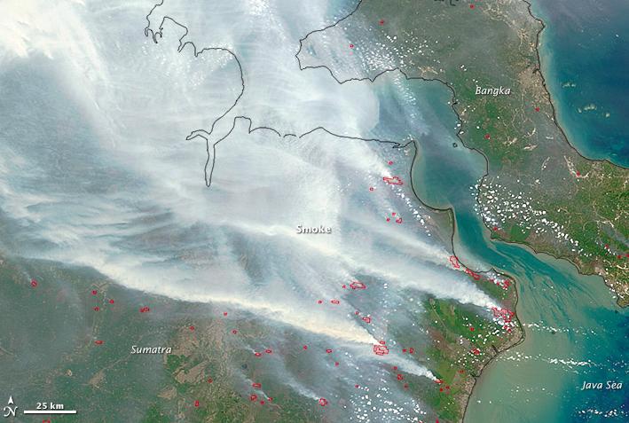 foto satelite kebakaran hutan