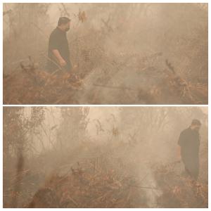 (5). Warga sudah sangat menderita akibat asap ini. Jarak pandang saat saya berkunjung hanya 50 meter saja.