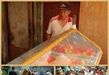 pedagang buah