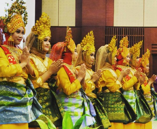 The dancers at the opening ceremony of Clinical Pharmacy Olympiade 2015