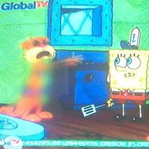 @Sakkatva 01/10/2015 20:56:20 WIB @dribble9 sandy si tupai di film spongebob aja kena sensor om..