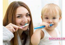 Berapa Lama Waktu Ideal Mengganti Sikat Gigi