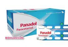 Obat Panadol Biru Cara Pemakaian, Dosis, Harga serta Efek Samping