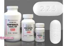 Obat Kolesterol Gemfibrozil Obat Hiperkolesterolemia Dari Golongan Fibrat