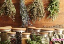 6 Obat Penenang Alami sebagai Pengganti Obat penenang di apotik