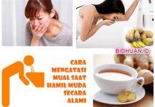 15 Makanan Penghilang Mual saat Hamil Praktis Efektif tanpa Bahan Kimia