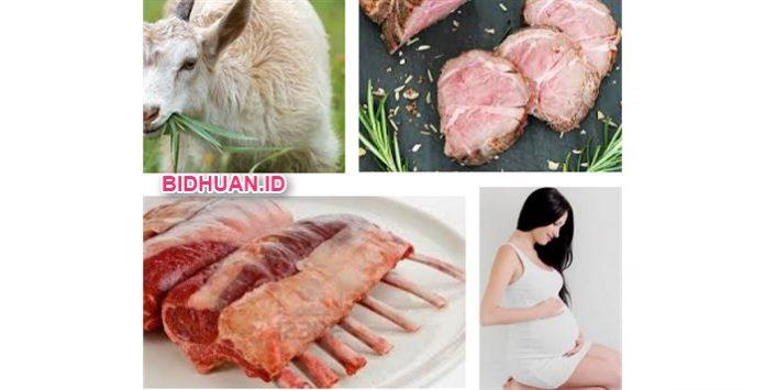 Daging Kambing untuk Ibu Hamil Bolehkah