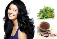 10 Cara Menumbuhkan Rambut dengan Cepat Secara Tradisional dan Alami