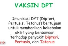 Imunisasi DPT - Apa Fungsi Serta Efek Sampingnya