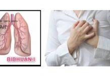 15 Penyebab Paru-Paru Basah dan 6 Cara Mencegah Terjadinya Penyakit Paru-Paru Basah