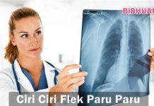 Flek Paru-Paru - Penyebab Cara Mencegah dan Gejala Penyakit Paru