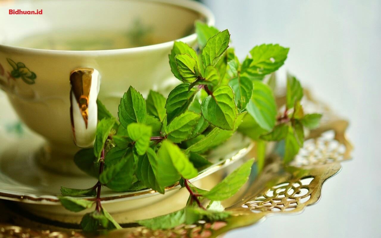 Obat Batuk Alami Dengan Peppermint