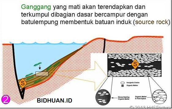artikel proses pembentukan minyak bumi