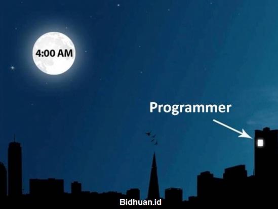 Kekurangan Menjadi Programmer