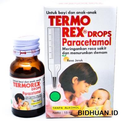 Obat Penurun Panas Termo Rex