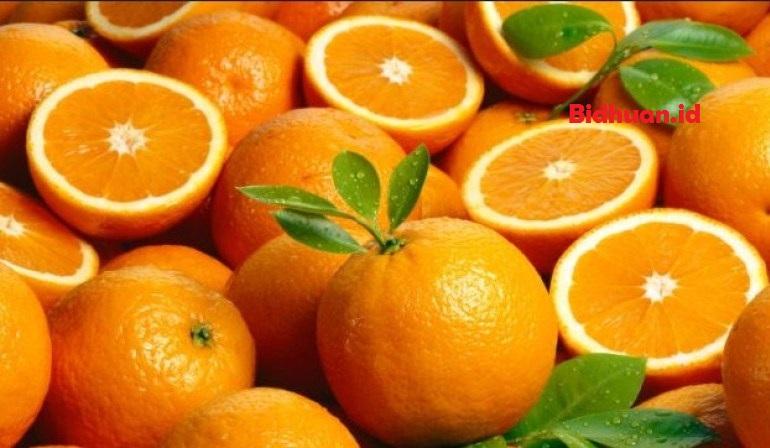 Buah yang bagus untuk ibu hamil yaitu jeruk