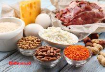 Cara menurunkan berat badan tanpaolahraga dengan mengkonsumi makanan kaya protein