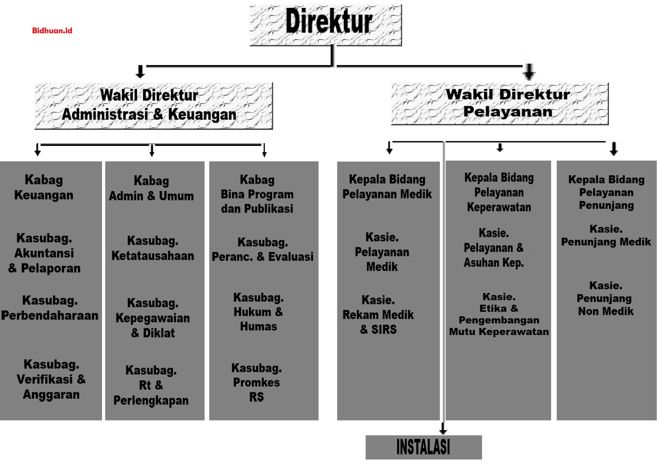 Struktur Organisasi Rumah Sakit