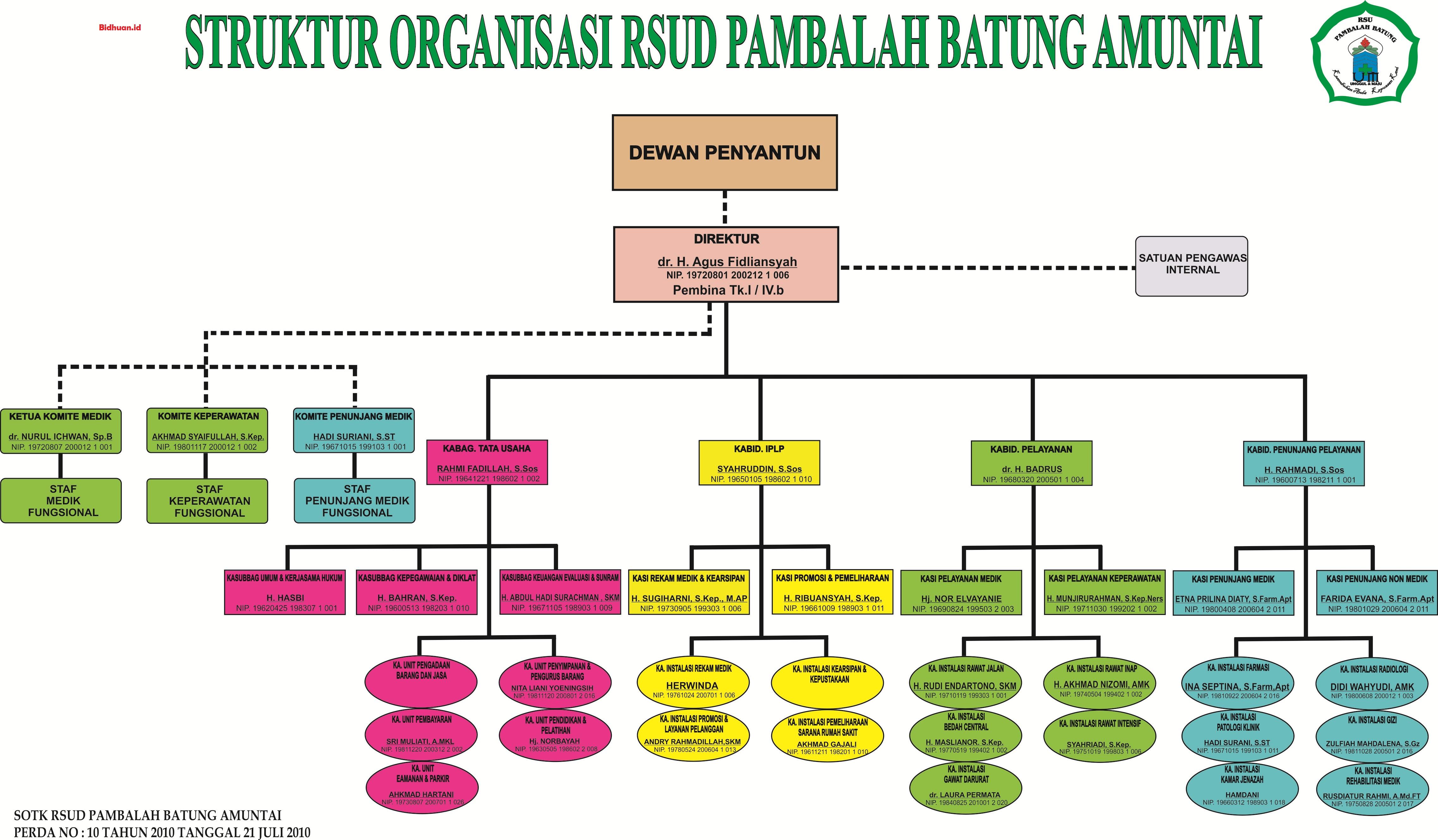Struktur organisasi rumah sakit: Direktur