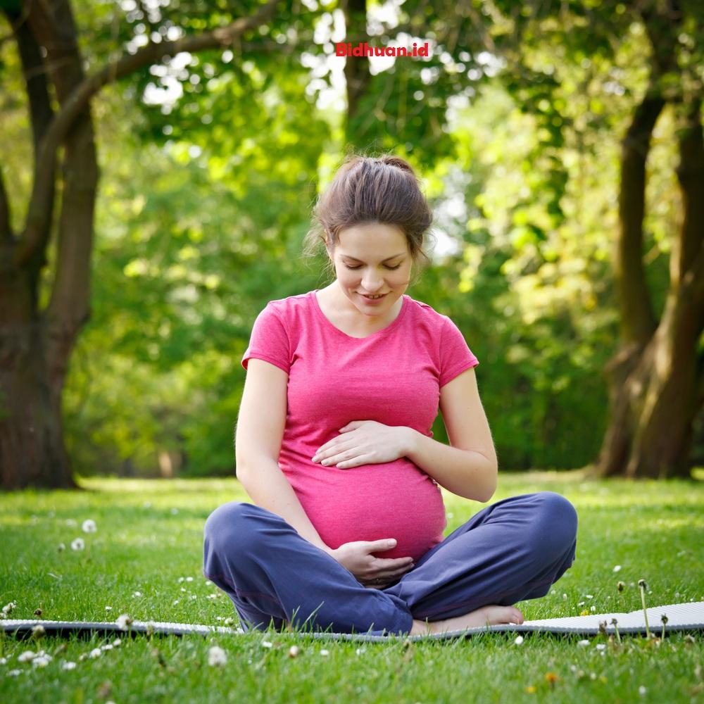 Promavit Obat Apa Amankah Untuk Ibu Hamil