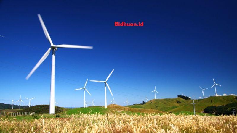 sumber daya alam yang dapat diperbaharui