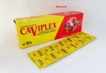 Caviplex, Suplemen Terbaik Untuk Memenuhi Kebutuhan Gizi