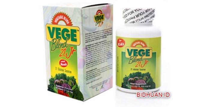 Manfaat Vegeblend dan Fruitblend Untuk Kesehatan
